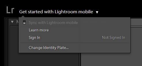 Prompt from within Lightroom